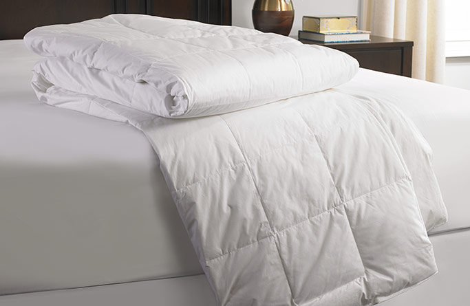 Lightweight Down Comforter Gaylord Hotels Store